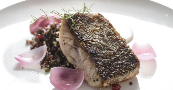 Mero con ensalada de quinua negra y tahini fondo de olla for Cocinar quinoa negra